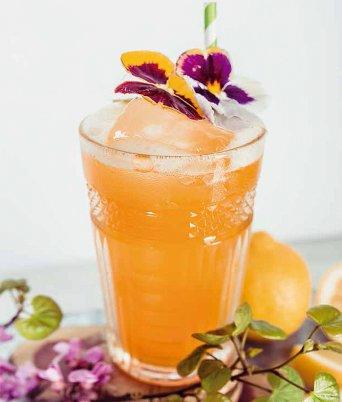 COCTELERÍA SIN ALCOHOL DE SOLÁN DE CABRAS